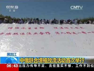 [视频]黑龙江:中俄联合增殖放流活动首次举行