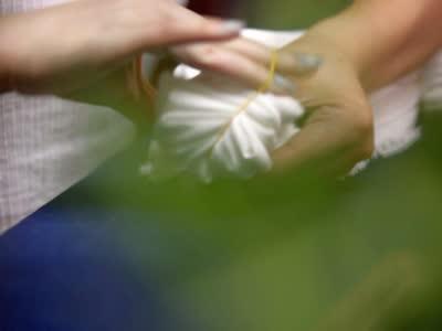 【手艺】白领辞职投身草木染 传统手艺艰难但因情怀而坚持