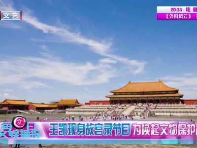 [视频]王凯现身故宫录节目 为唤起文物保护意识