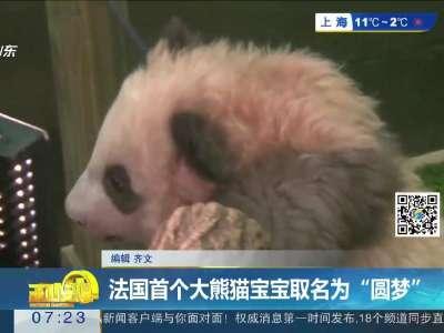 """[视频]法国首个大熊猫宝宝取名为""""圆梦"""""""
