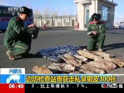 [视频]内蒙古 边防检查站查获走私旱獭皮300张