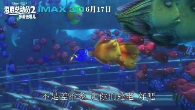 海底总动员2:多莉去哪儿 120秒预告【IMAX3D Finding Dory】