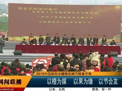 2016中国麻阳冰糖橙采摘节隆重开幕