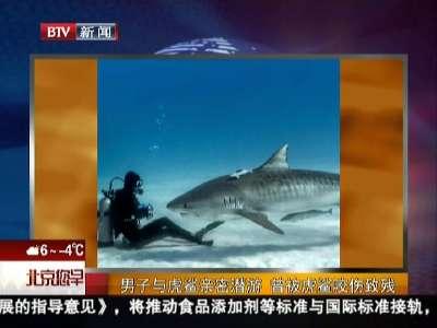 [视频]男子与虎鲨亲密潜游 曾被虎鲨咬伤致残