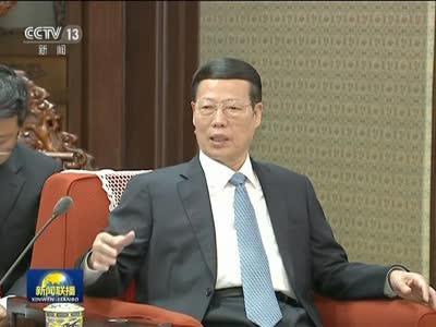 [视频]张高丽会见印尼总统特使