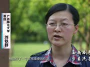 《广西故事》第69集:西南剧展 岁月流音