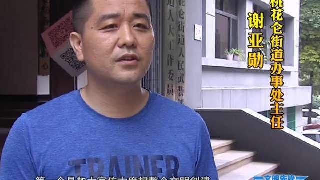 """""""文明先锋社区行""""桃花仑街道专场"""