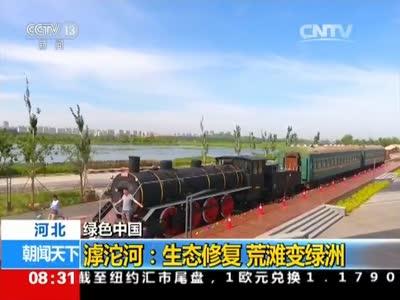 [视频]绿色中国·河北 滹沱河:生态修复 荒滩变绿洲