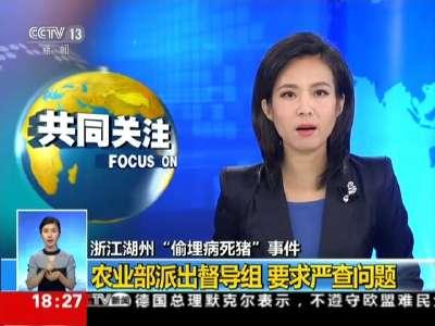 """[视频]浙江湖州""""偷埋病死猪""""事件:农业部派出督导组 要求严查问题"""