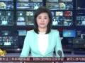 """[视频]塞拉利昂:709克拉""""和平之钻""""拍出653万美元"""