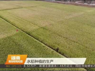 2018年01月13日湖南新闻联播