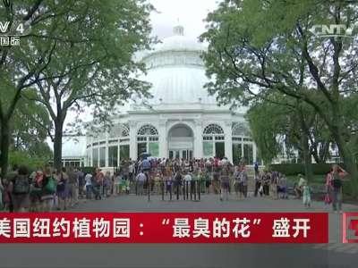 """[视频]美国纽约植物园:""""最臭的花""""盛开"""