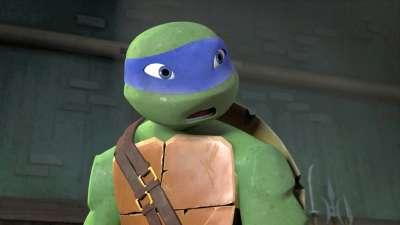 忍者龟 20