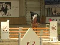 天星调良国际马术俱乐部骑手风采 杨富军