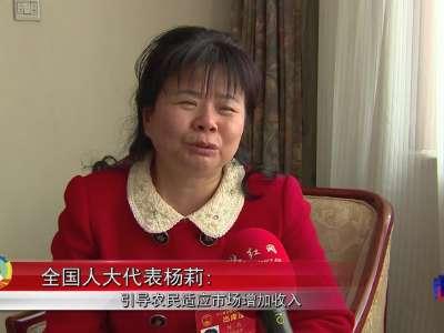 全国人大代表杨莉:引导农民适应市场增加收入