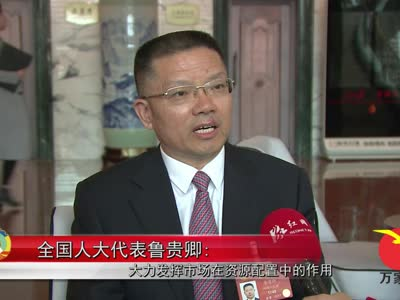 全国人大代表鲁贵卿:大力发挥市场在资源配置中的作用