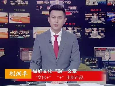 2017年01月01日湖南新闻联播