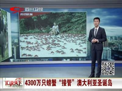 """[视频]4300万只螃蟹""""接管""""澳大利亚圣诞岛"""