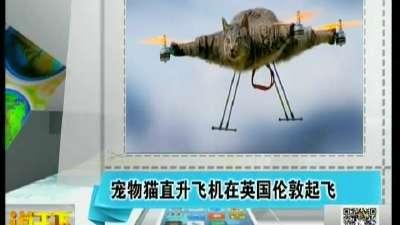 宠物猫直升飞机在英国伦敦起飞