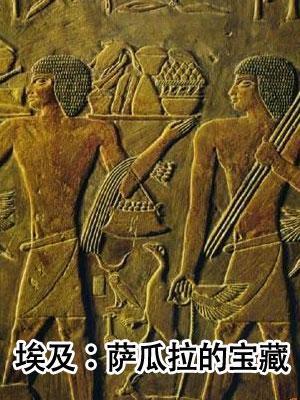 埃及:萨瓜拉的宝藏