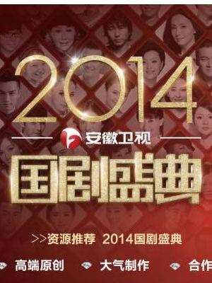 安徽卫视2014国剧盛典