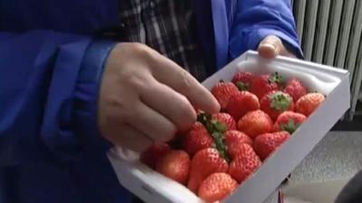 七天不坏的草莓还能吃吗 蔬菜焯水也有大学问