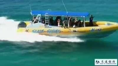 澳大利亚林德曼岛  澳大利亚旅游不可不去之地