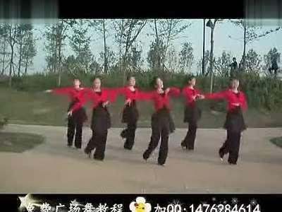 2013中老年广场舞大全 广场舞教学 广场舞蹈视
