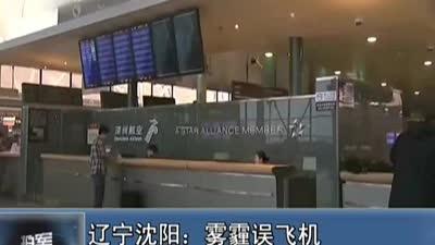 辽宁沈阳:雾霾误飞机 两乘客闯驾驶舱被拘