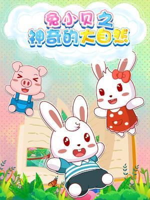 兔小贝之神奇的大自然海报
